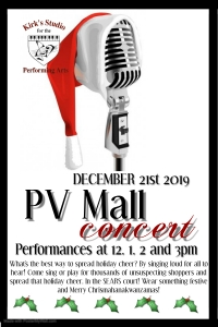 Want to perform at PV Mall?